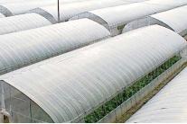 大棚配件,水肥一体化,光伏大棚,温室大棚,大棚材料,大棚骨架